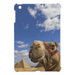 Camel in front of the pyramids of Giza, Egypt, iPad Mini Case