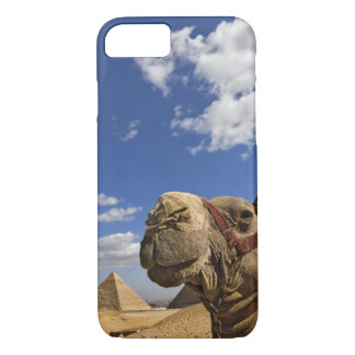 Camel in front of the pyramids of Giza, Egypt, iPhone 7 Case