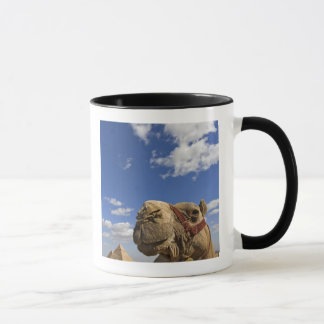 Camel in front of the pyramids of Giza, Egypt, Mug