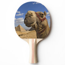 Camel in front of the pyramids of Giza, Egypt, Ping Pong Paddle