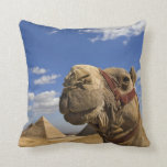 Camel in front of the pyramids of Giza, Egypt, Throw Pillow