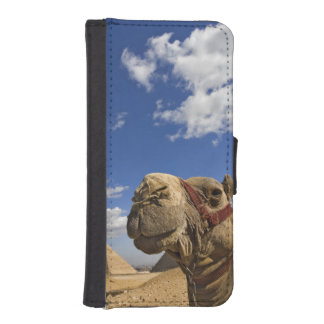 Camel in front of the pyramids of Giza, Egypt, Wallet Phone Case For iPhone SE/5/5s
