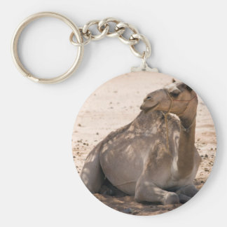 Camel in the Shade Key Chains