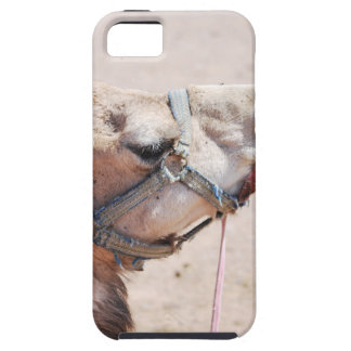 Camel iPhone SE/5/5s Case