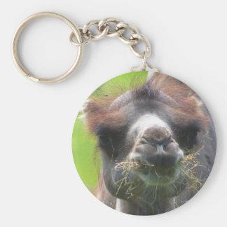 Camel (Junior) Key Chains