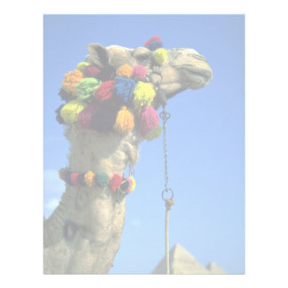 Camel Letterhead Template