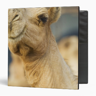 Camel Market near Cairo, Egypt Binder
