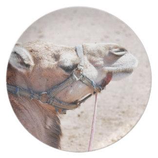 Camel Melamine Plate