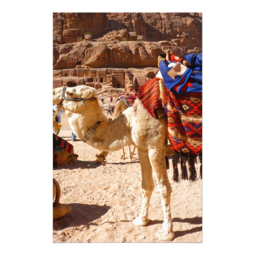Camel Middle East Nature Animals Destiny Gifts Customized Stationery