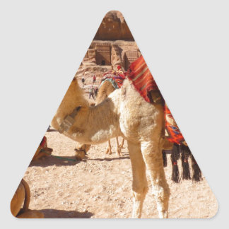 Camel Middle East Nature Animals Destiny Gifts Triangle Sticker