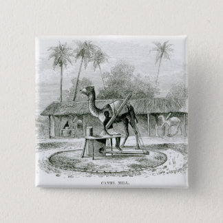 Camel Mill, from 'Travels in Africa' Pinback Button