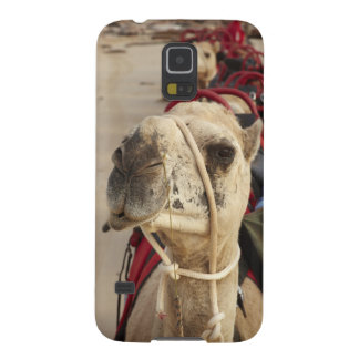 Camel on Cable Beach, Broome Galaxy S5 Case