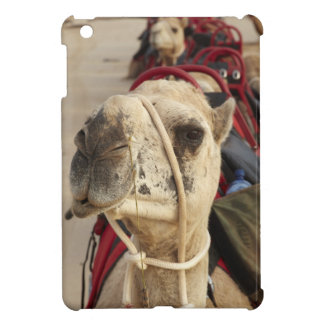 Camel on Cable Beach, Broome iPad Mini Cases