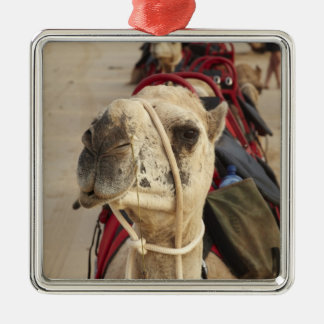 Camel on Cable Beach, Broome Square Metal Christmas Ornament