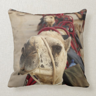 Camel on Cable Beach, Broome Throw Pillow