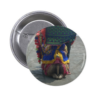 Camel on the toes.png pinback button