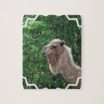 Camel Photo Design  Puzzle