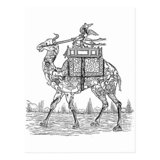 Camel Post Cards
