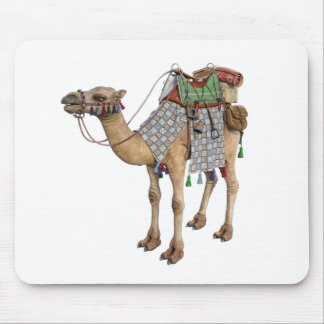 Camel prepared for Ancient Rider Mouse Pad
