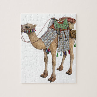 Camel prepared for Ancient Rider Puzzle
