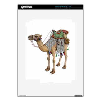 Camel prepared for Ancient Rider Skin For iPad 2