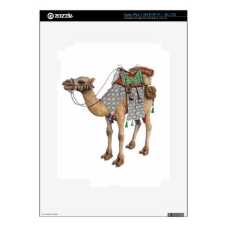 Camel prepared for Ancient Rider Skin For iPad 3