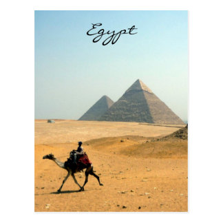 camel pyramid postcard
