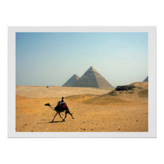 camel pyramids border poster
