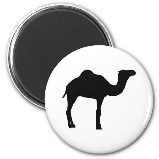 Camel Refrigerator Magnet