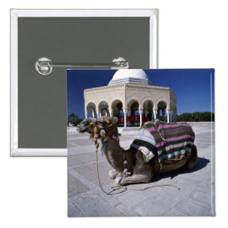 Camel resting in front of dome Monastir Tunisia Pins