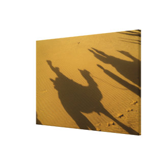 Camel silhouettes on sand dunes, Thar Desert, Gallery Wrapped Canvas