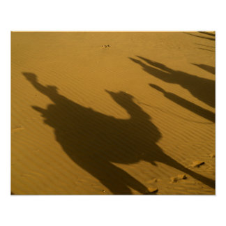 Camel silhouettes on sand dunes, Thar Desert, Poster