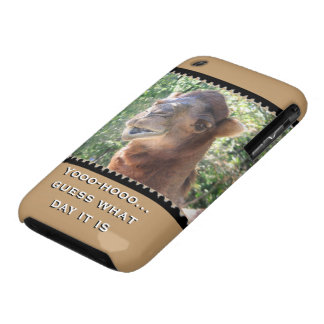 Camel speaks iPhone 3 cover