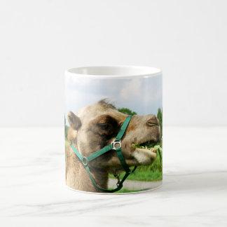 Camel Taza Mágica