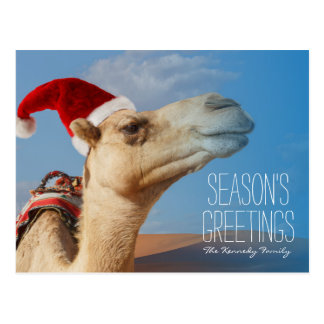 camel with christmas hat postcard
