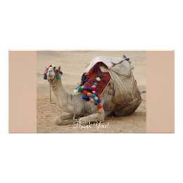 Camel with Colorful Pom-Poms Card
