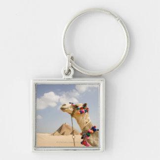 Camel with Pyramids Giza, Egypt Keychain