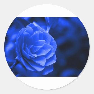 camelia azul etiqueta redonda