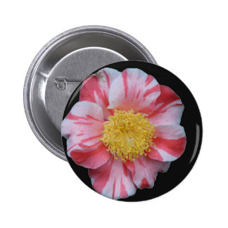 Camelia Flower Pinback Buttons