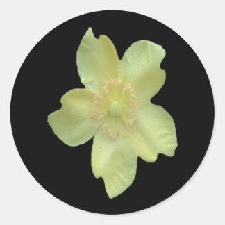 Camelia Flower Sticker