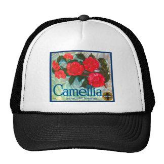 Camelia Gorra