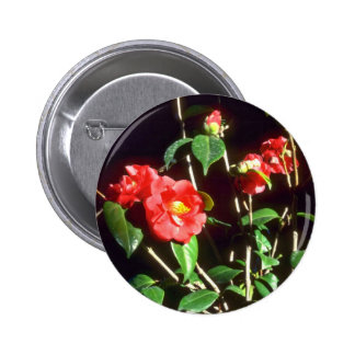 Camelia Japonica A. Audusson (Common Camellia) Pin 2 Inch Round Button