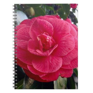 Camelia Notebook