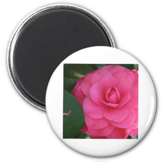 Camelia Pink with love Refrigerator Magnets