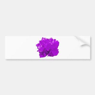 Camelia Pop Purple Bumper Sticker