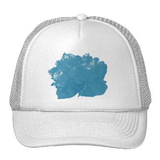 Camelia Pop Teal Trucker Hat