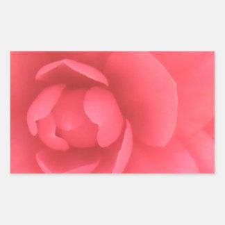 Camelia rosada rectangular altavoces