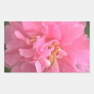Camelia rosada rectangular altavoz