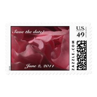 """Camelia rosada """"reserva sellos de la fecha"""""""