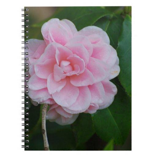Camelia rosado bonito libro de apuntes